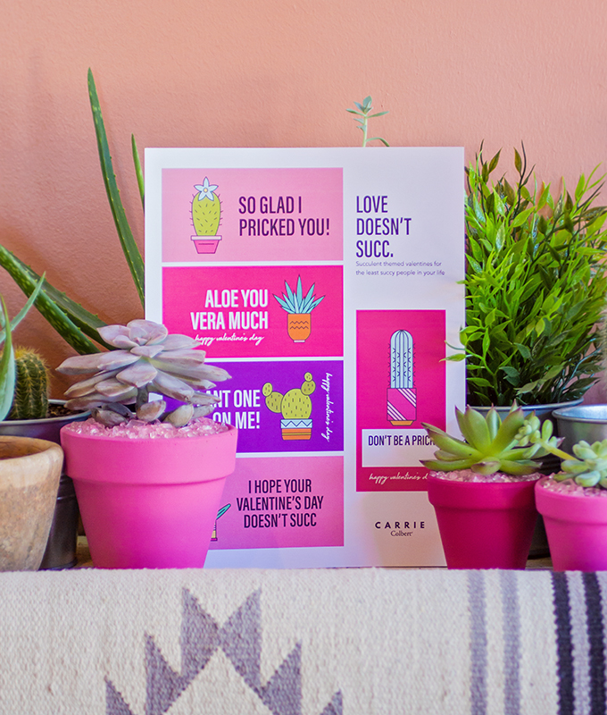 7 Steps To A Perfectly Pink Succulent Themed Valentine S Day